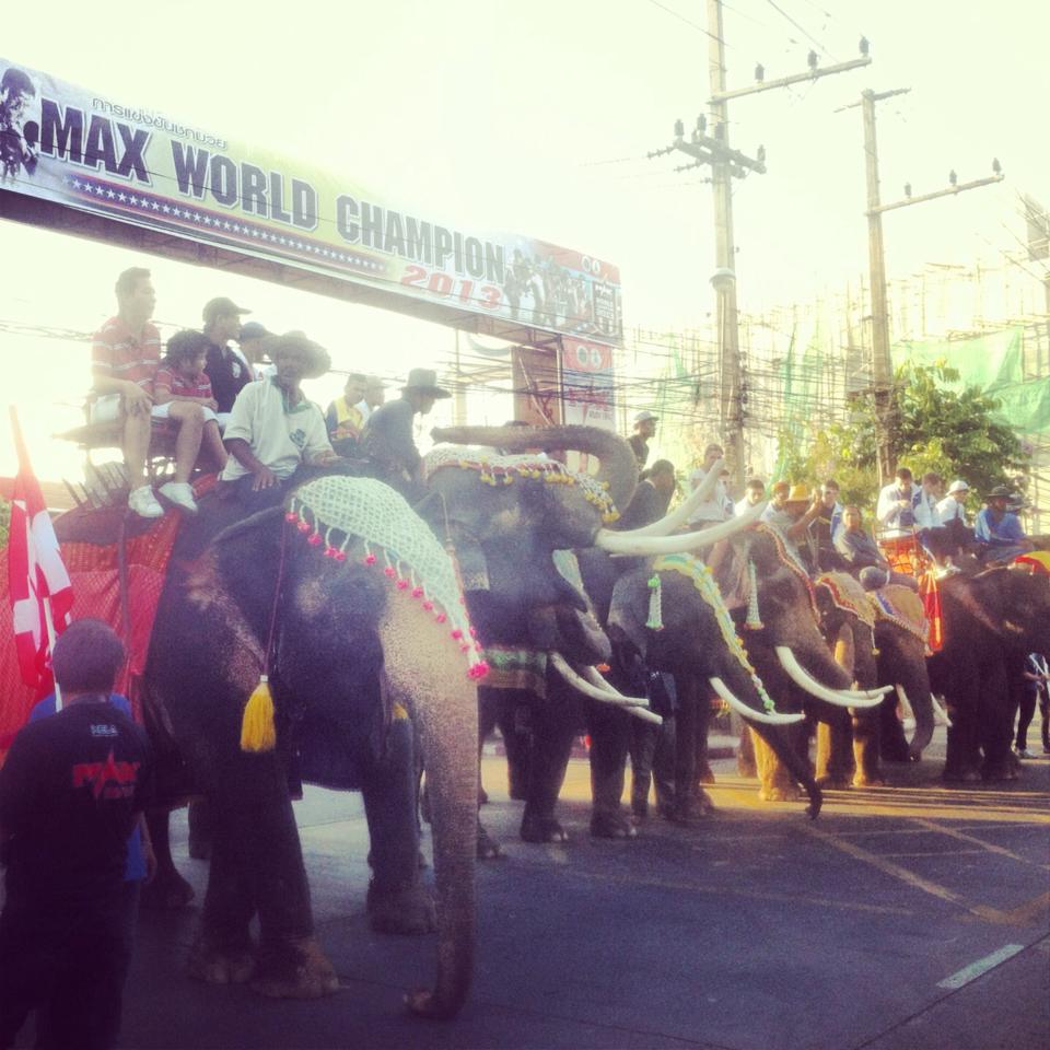 Едут на слонах бойцы